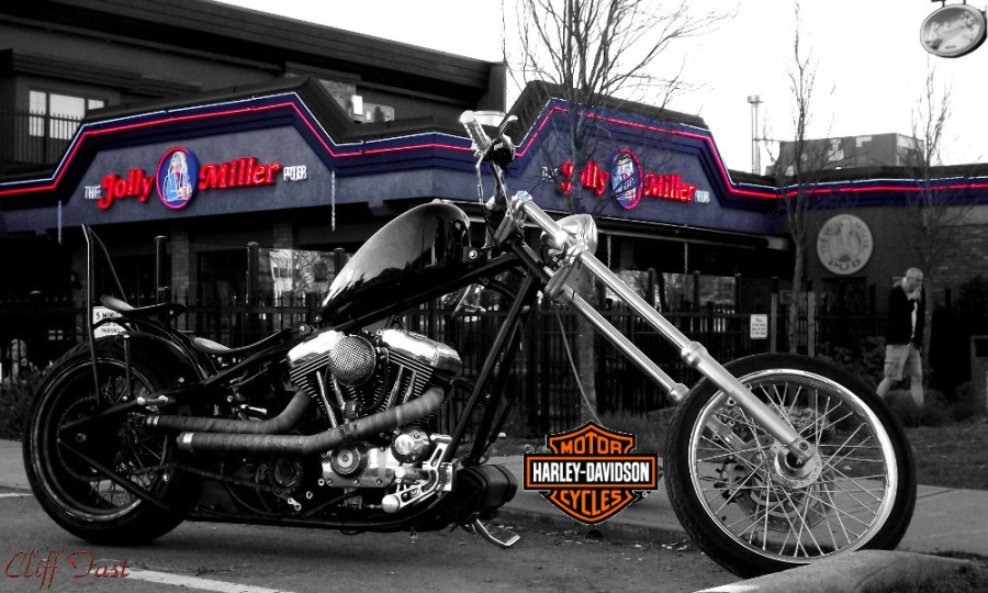 Custom Harley davidson MC