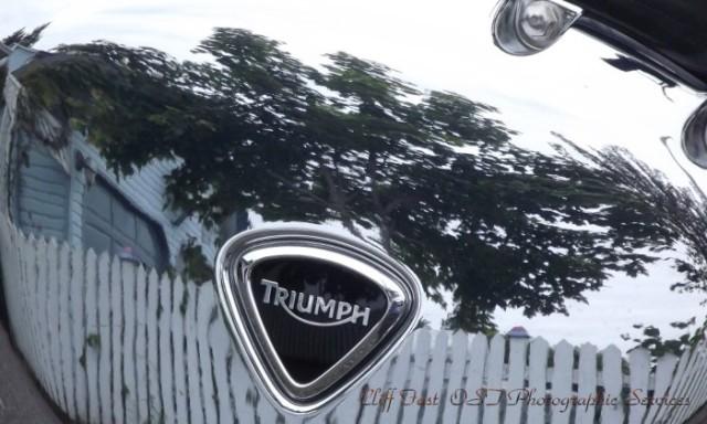 Cam's Triumph