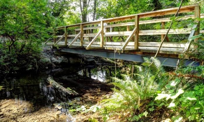 Bridges-1