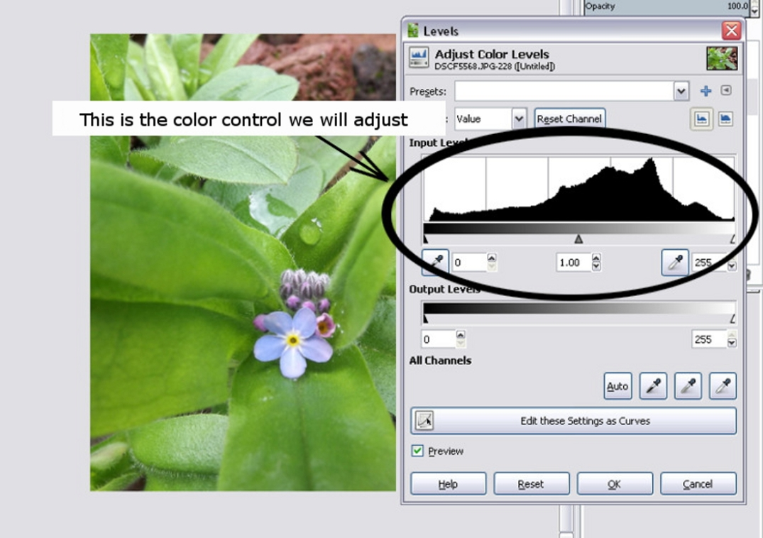 Showing the color control