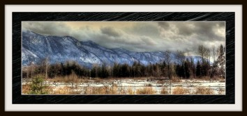 The river valley in the winter near Chilliwack River.