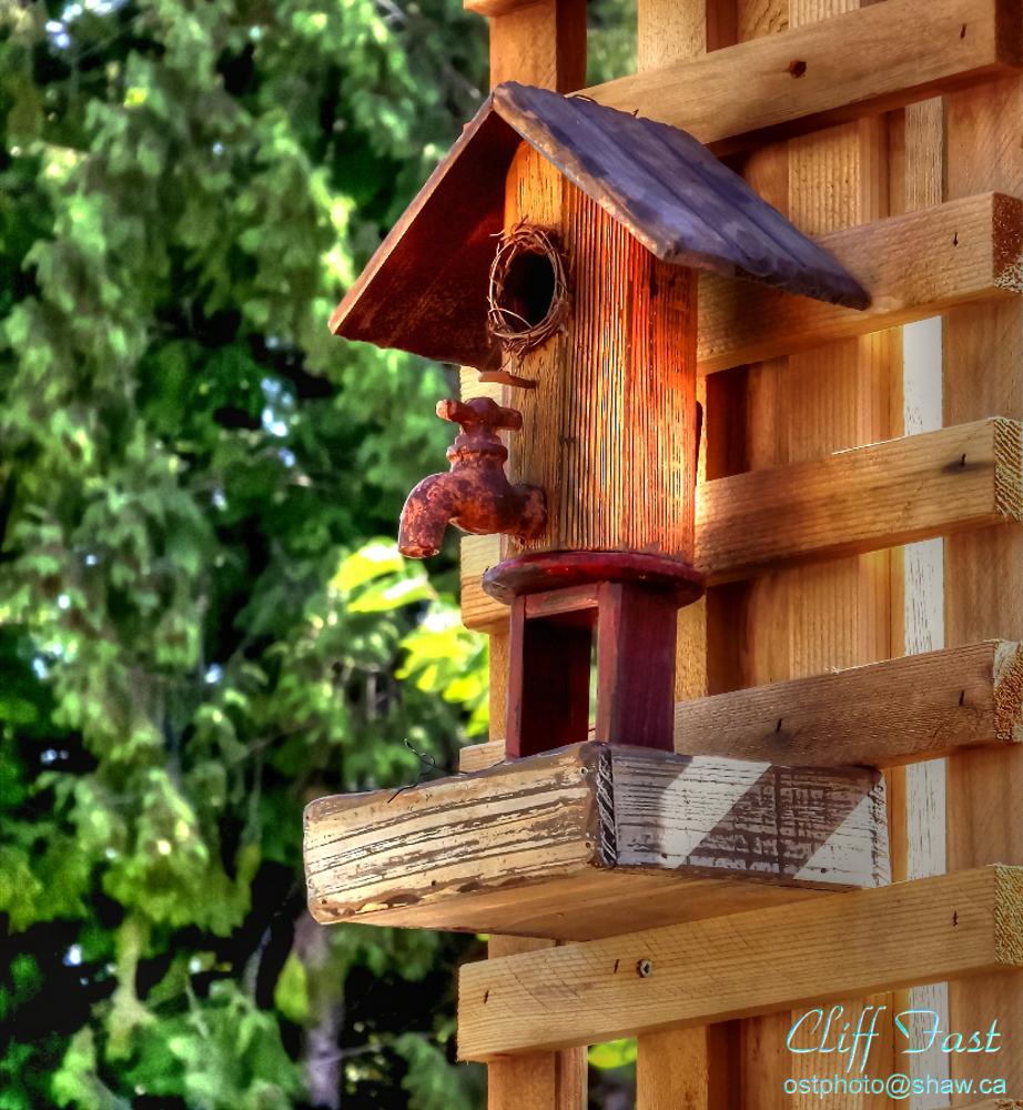 A unique birdhouse