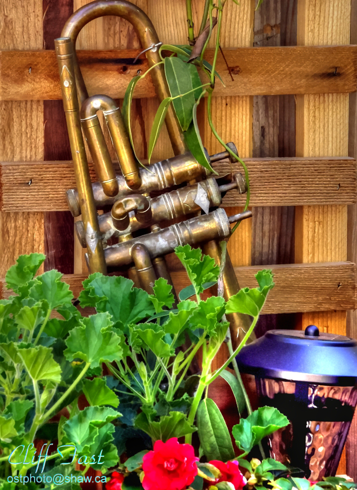 An old trumpet in a garden
