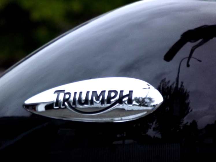 The tank of a very clean Triumph motorcycle.
