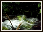 The Vedder River at high water in a 5x7 format.
