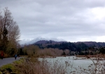 A photo of one of the views you can see along the Vedder River.