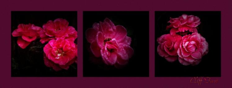 Floral-2